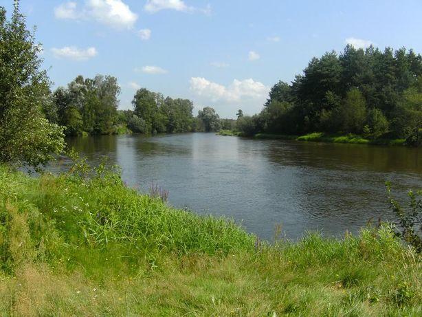 wynajme domek w Przywozie Dolnym nad rzeka Warta