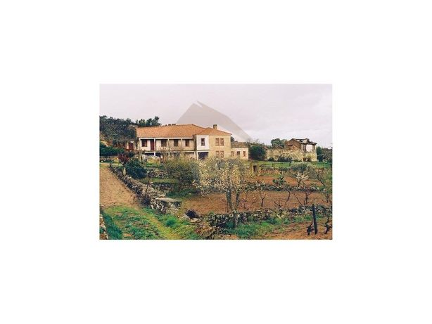 Quinta - Meda