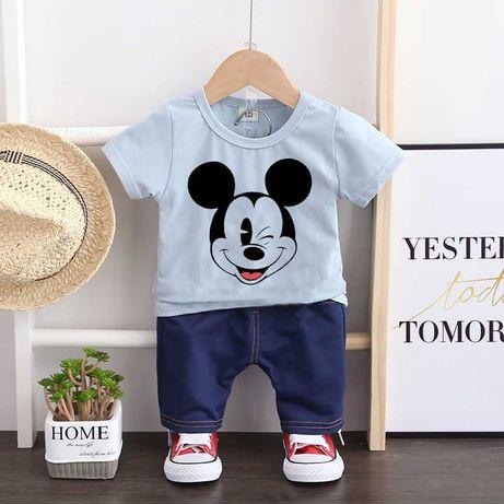 Костюм на мальчика футболка + шорты (размеры: 73,80,90,100,110,116)