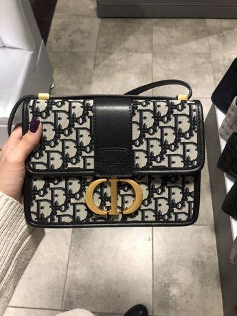 Сумка Chistian Dior Montaigne Bag pattern