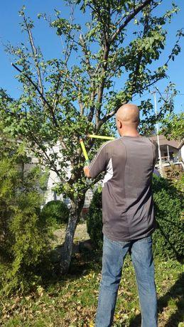 Обрезка сада, обрезка фруктовых деревьев для улучшения плодоношения.