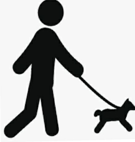Pet sitting/ Pet sitter/ dog Walker