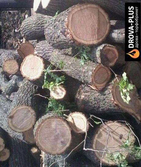 """Компанія """"Drova-Plus"""" Продає дрова твердих порід Дуб Граб Ясен Акація"""