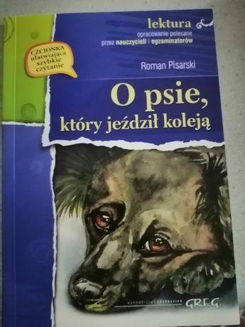 O psie który jeździł koleją lektura
