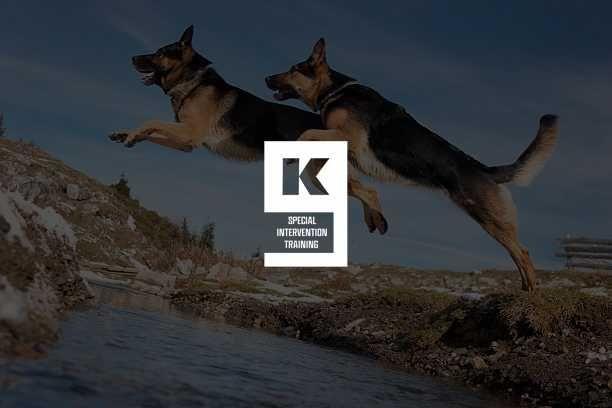 Treinador de cães profissional | Treino para todo tipo de cães