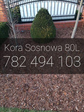 Kora Sosnowa 80L SORTOWANA | Inowrocław i okolice | Dostawa Gratis