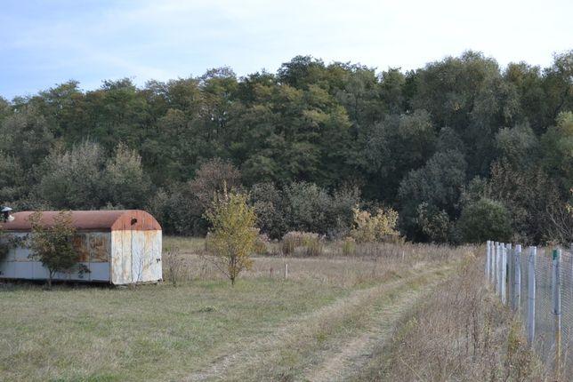 Участок для дома 32 сотки под лесом в Андреевке Бориспольский район