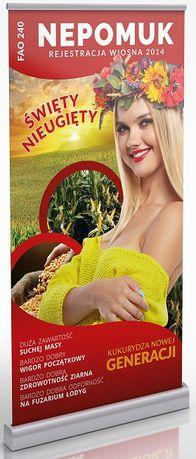 Kukurydza Nepomuk FAO240 materiał siewny