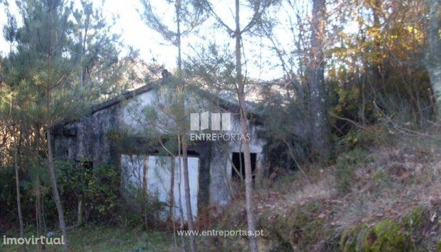 Venda Quinta com Moradia para reconstruir, Ovil, Baião
