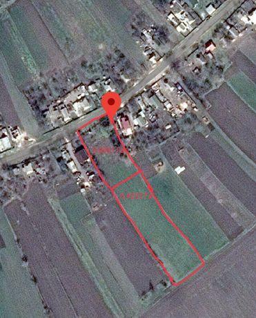 Земельна ділянка ОСГ 42 сотки