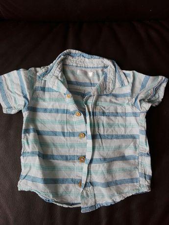 Koszula chłopięca z krótkim rękawem roz. 80