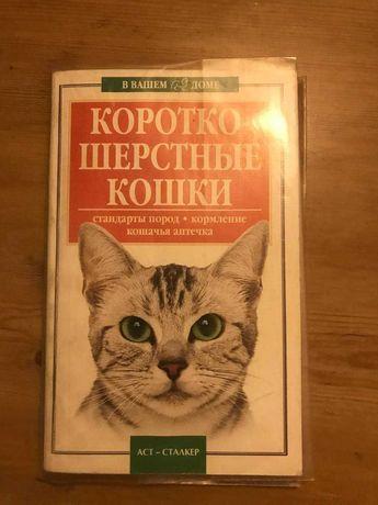 Короткошерстные кошки стандарты пород кормление