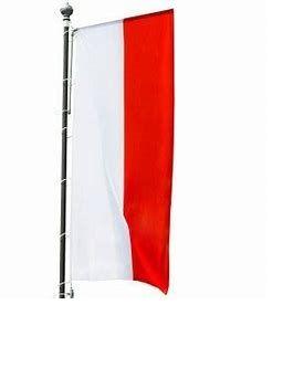 Flaga, flagi 480 x 150 pionowa na maszt Polska Unia UE