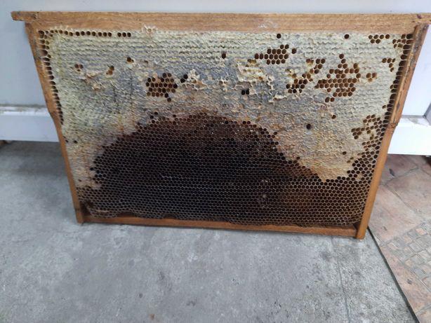 Рамки медовые, сушь