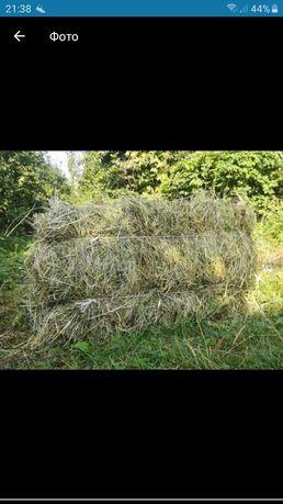 Тюкованое сено