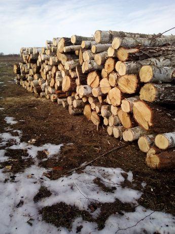 Продам березові дрова