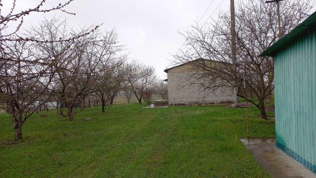 Продам дом в смт петриковке петриковского р-н с. Гречаное