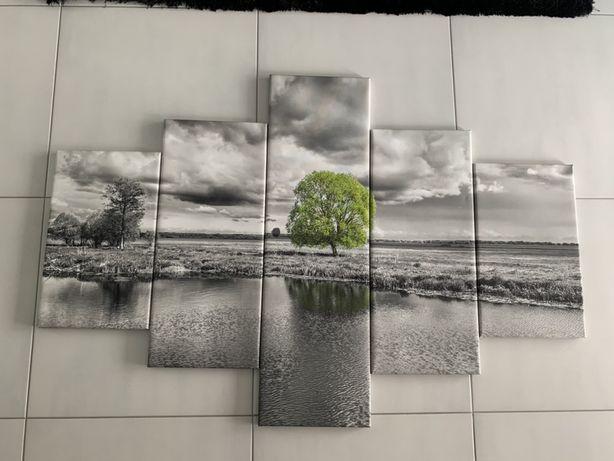 Obraz Natura Drzewo 5 szt. 150x100 cm