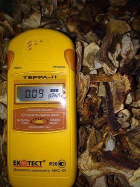 Продам сушеные белые грибы ,сушеные польские грибы