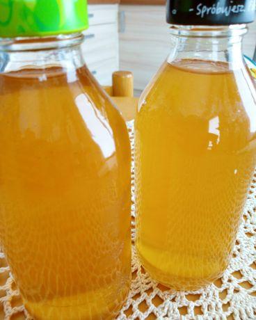 Kombucha. Probiotyk z grzybka herbacianego.
