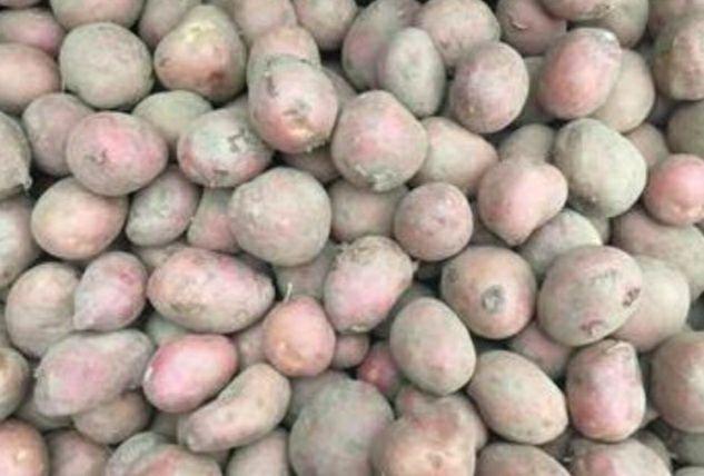 Ziemniaki Ricardo Grajewo - image 1