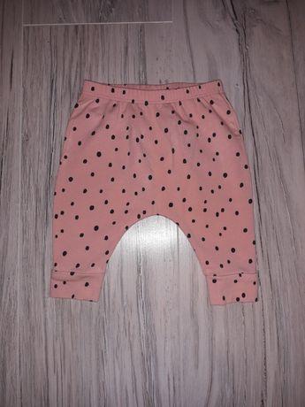 Spodnie Next - letnie - r. 0-3 M