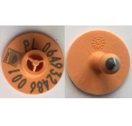 Agencyjne kolczyki dla trzody chlewnej z numerem gospodarstwa_kolczyk