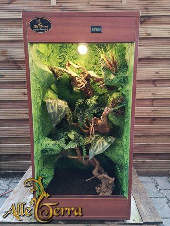 Terrarium z płyty meblowej 50x50x100 cm leśny wystrój AlleTerra