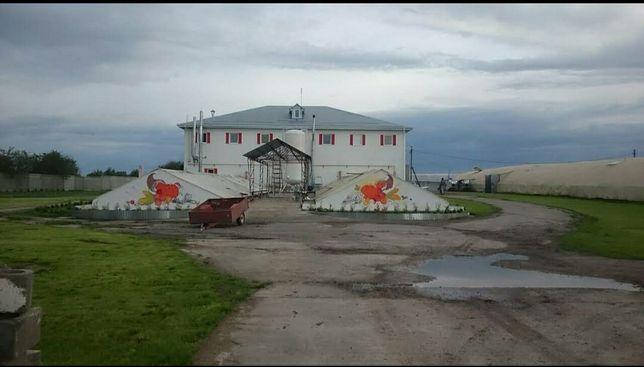 Продажа птицеферма, животноводческий комплекс, своб.назн.