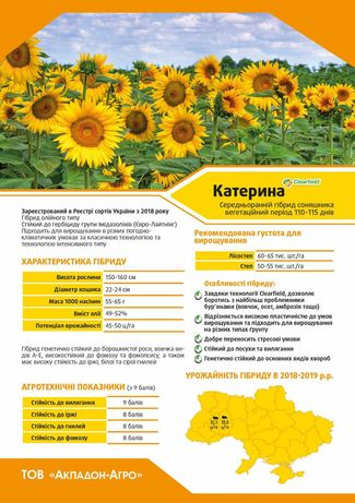 Семена Подсолнечника Евролайтинг ,Кукурузы,насіння соняшника,кукурудзи