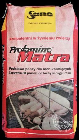Концентрат для годуючих свиноматок