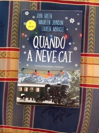 """livro """"quando a neve cai"""""""