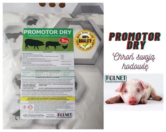 Zakwaszacz Promotor Dry na Beztlenowce dla trzody, drobiu 5 kg Rolnet