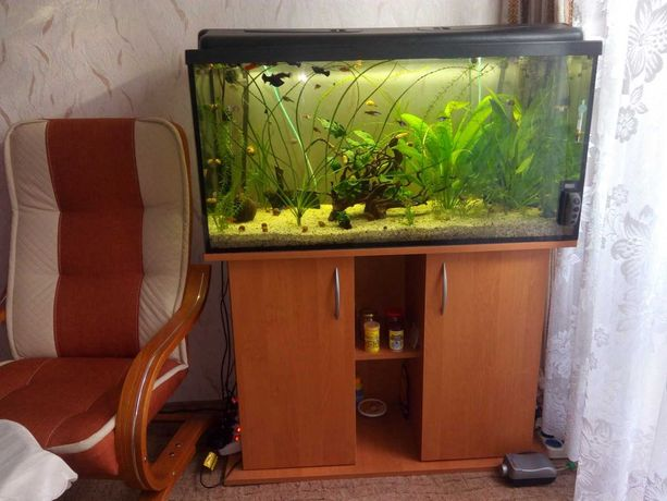 Zestaw 3 gotowe akwaria do hodowli ryb.