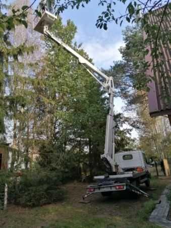 Karczowanie lasu, sadu, wycinka drzew, formowanie koron, pielęgnacje