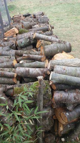 drewno opałowe czeresnia