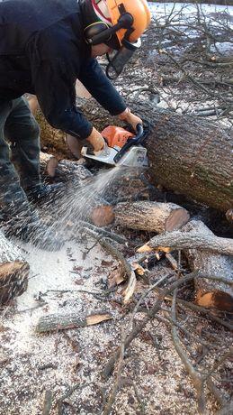 Wycinka pielęgnacja drzew usługi podnośnikiem 16m rębak czyszczenie