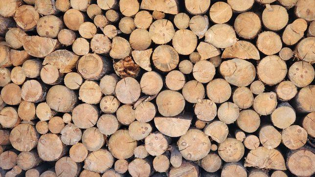 продам  дрова Сосна береза  дуб