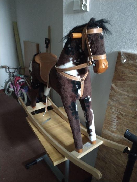 Koń na biegunach Gdańsk - image 1
