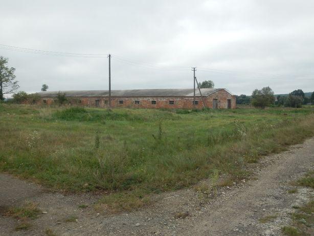 ферма корівник, будівля, виробниче приміщення.
