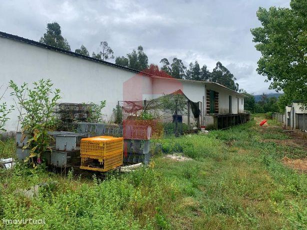 Armazém para Agropecuária em Oliveira, Arcos Valdevez
