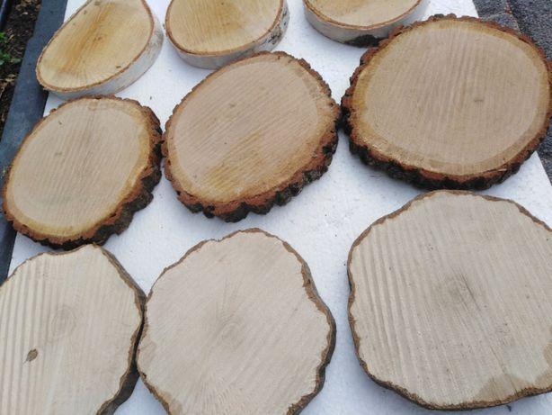 Plastry plaster drewna dąb grab brzoza 15-18cm