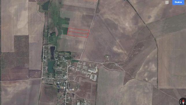Продам земельный пай 2 шт. 2,8590 га. и 3,0388 га