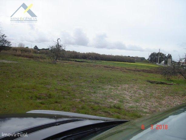 Terreno na Quinta da Serralheira em Palmela