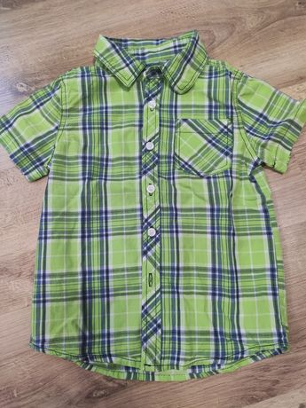 Koszula w zieloną kratkę
