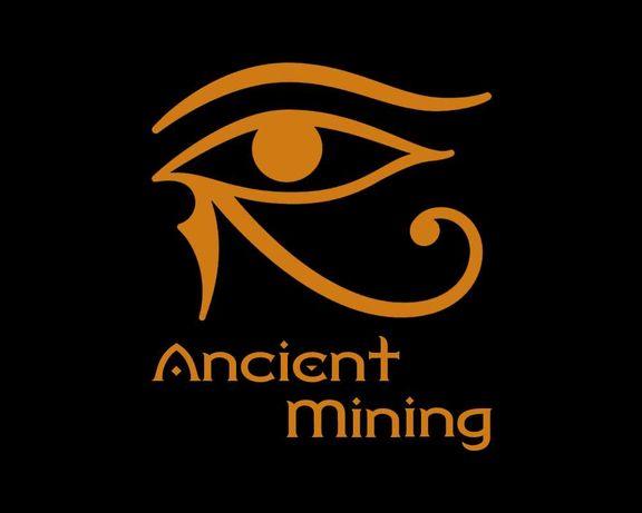 Montagem, Configuração e Assistência de Mining Rigs