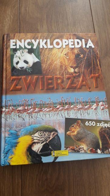 Encyklopedia zwierząt ladne wydanie