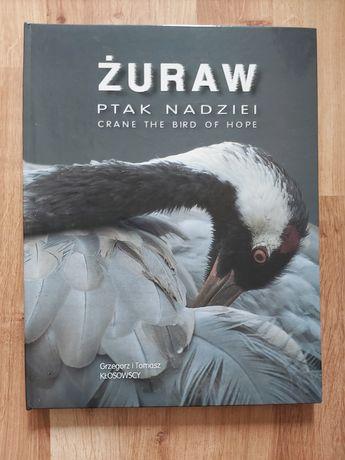 Żuraw, ptak nadziei - Grzegorz i Tomasz Kłosowscy