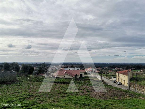 Terreno para construção na Branca, Albergaria-a-Velha
