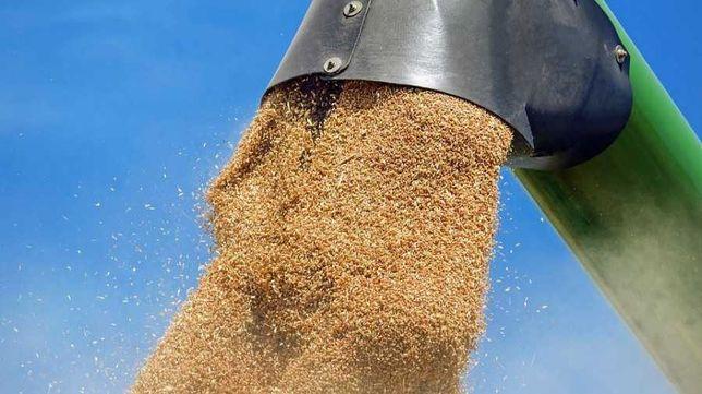 Шнековый погрузчик, винтовой конвейер протравитель для зерна